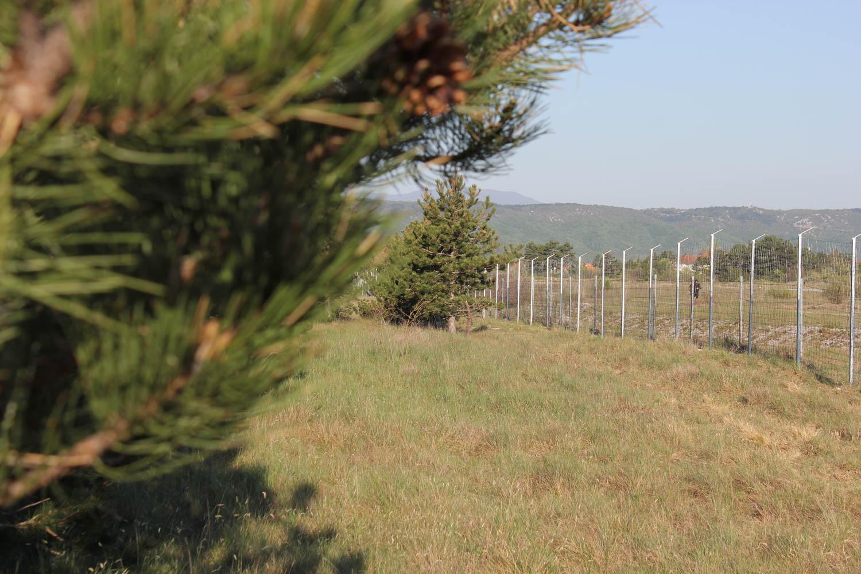Žičana ograda s pastirom